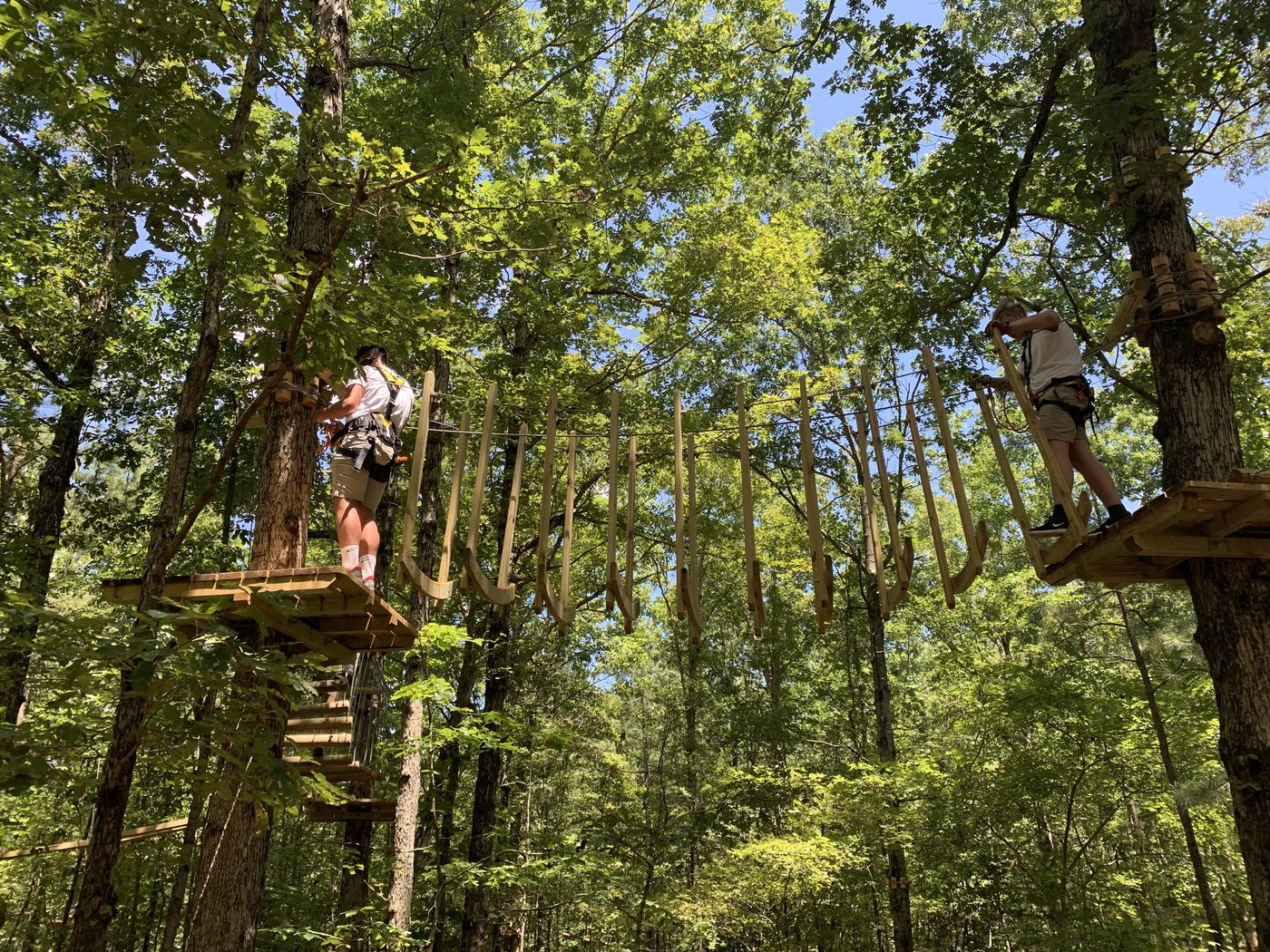 tree-top-obstacle-course